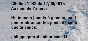 Cit 1043  170815