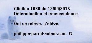 Cit 1066  120915
