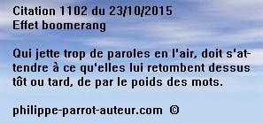 Cit 1102  231015