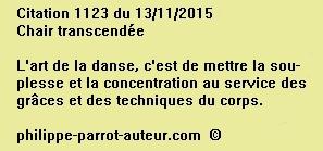 Cit 1123  131215