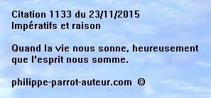 Cit 1133  231115