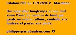 Cit 209 131212