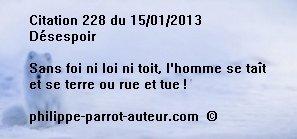 Cit 228 150113