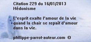 Cit 229 160113