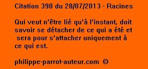 Cit 390  280713