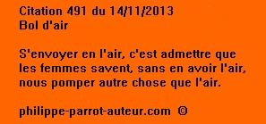 Cit 491  141113
