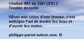 Cit 497  201113