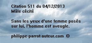 Cit 511  041213