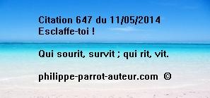 Cit 647  110514