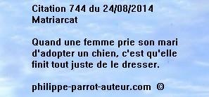 Cit 744  240814