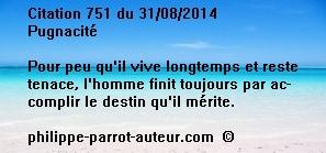 Cit 751  310814