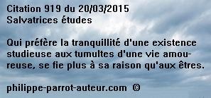 Cit 919  200315
