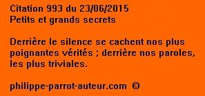 Cit 993  230615
