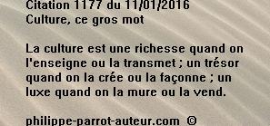 Cit 1177  110116