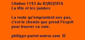 Cit 1193  020216