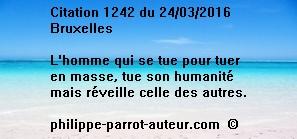Cit 1242  240316