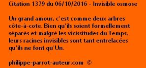 Cit 1379  061016