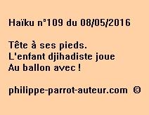 Haïku n°109 du 080516