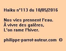Haïku n°113 du 100516