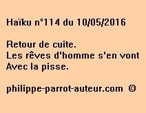 Haïku n°114 du 100516