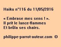 Haïku n°116 du 110516