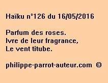 Haïku n°126 du 160516