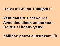Haïku n°145 du 130616