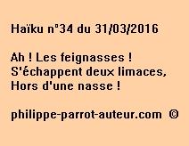 Haïku n°34 du 310316