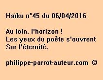 Haïku n°45 du 060416