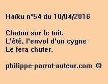 Haïku n°54 du 100416