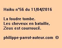 Haïku n°56 du 110416