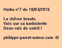 Haïku n°7 du 180316