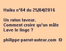 Haïku n°84 du 250416