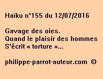 Haïku n°155 du 120716