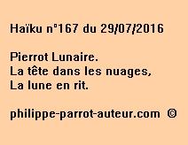 Haïku n°167 du 290716