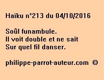 Haïku n°213 du 041016