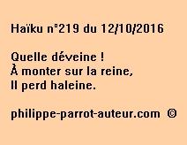 Haïku n°219 du 121016