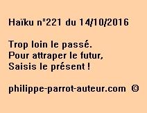 Haïku n°221 du 141016