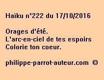 Haïku n°222 du 171016