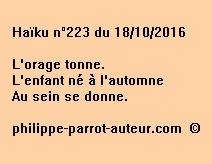 Haïku n°223 du 181016