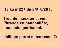 Haïku n°227 du 241016