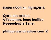 Haïku n°229 du 261016