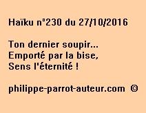 Haïku n°230 du 271016