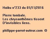 Haïku n°233 du 011116