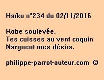 Haïku n°234 du 021116