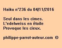 Haïku n°236 du 041116