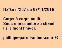Haïku n°237 du 071116