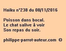 Haïku n°238 du 081116