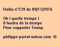 Haïku n°239 du 091116