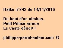Haïku n°242 du 141116